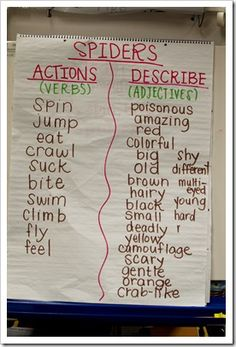 Spidey parts of speech- use for garden, bugs and plants for school garden