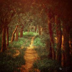 Beautifully Enchanting Pathways in Nature - My Modern Metropolis - Ildiko Neer