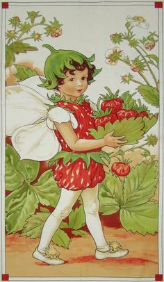 ON SALE DC 4275 - Rare Strawberry Flower Fairy Panel, Cotton Fabric, from the Cecily Mary Barker Fairies Collection. Cicely Mary Barker, Illustration Art, Illustrations, Fairy Pictures, Vintage Fairies, Beautiful Fairies, Fairytale Art, Flower Fairies, Fairy Art