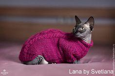 Одежда для кошек, ручной работы. Ярмарка Мастеров - ручная работа. Купить Свитер для сфинкса. Handmade. Разноцветный, одежда для животных