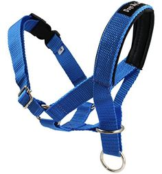"Dog Head Collar Halter Blue 5 Sizes (S: 6.5""-8.25"" Snout) -- Want additional info? Click on the image."