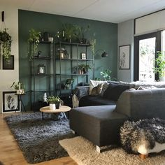 ❤️️ 76 The Most Popular Green Living Room Wall Decorating Ideas 6 - Living room green - Living Room Green, Green Rooms, Living Room Colors, Home Living Room, Interior Design Living Room, Living Room Designs, Living Room Wall Ideas, Grey Living Room With Color, Living Room Accent Wall