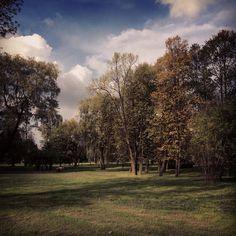 #szydlowiec #szydłowiec #zamekwszydłowcu #zabytki #castle #monuments #park #autumn