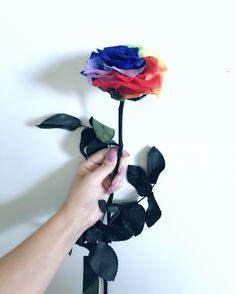 Todo lo que necesitas es soñar   Natural, Roses, The Creation, Beauty, Nature, Au Natural