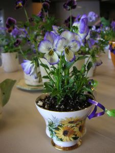 Making tea cup planters for Mothers day