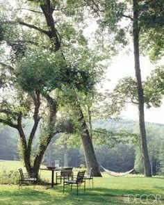 Hammock under the trees.