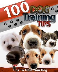 https://www.facebook.com/pages/Dog-Training-Tips/327185040690007