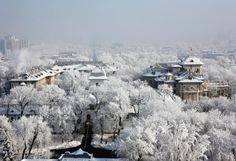 pictures of bucharest romania | Cotroceni palace Bucharest » winter Cotroceni Palace Bucharest ...