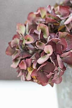 A Bunch for the Weekend-# 29- Dried Hydrangea-Ingrid Henningsson-Of Spring and Summer