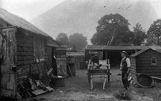 Vintage - Farm Life by Tobyotter, via Flickr