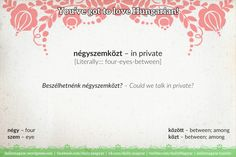 négyszemközt [ˈneːɟsemkøst] – in private; between you and me [Literally::: four-eyes-between] Hungary, Language, Wisdom, Learning, Country, Places, Board, Rural Area, Studying