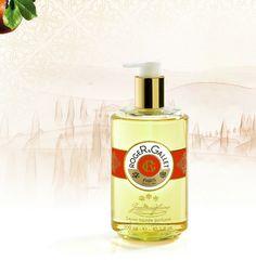 Jabones Líquidos Perfumados y Frescos