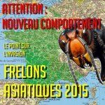 Frelons asiatiques 2015 : attention ! changement de comportement.