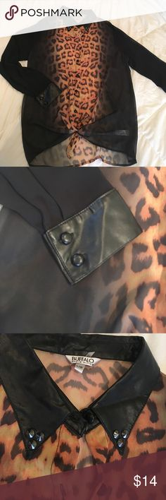 BUFFALO Sexy Top💋 Leopard print & black sheer, faux leather collar with studs. Cuff and buttons are also faux leather! Like new! Gorgeous! Buffalo David Bitton Tops