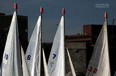 sailing school / the charles river / boston ma