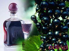 nalewka z czarnej porzeczki, czarne porzeczki Wine Drinks, Cocktail Drinks, Cocktails, Polish Recipes, Irish Cream, Healthy Drinks, Nespresso, Liquor, Vodka