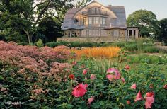 Darien, CT | | Oehme van Sweden | Oehme van Sweden.  Love the sweeps of grasses and perennials