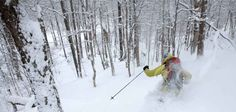 Mad River Glen - Ski It If You Can - BEST East Coast Mountain, Hands Down :)