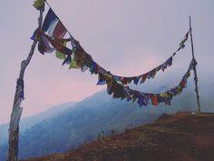 #darjeeling is #magical  #incredibleindia