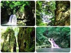 ☆共和AMEL日本の四季☆  広島県安芸太田にある三段峡の 見所のひとつ、猿飛渡舟。 かつて猿が飛び交ったという猿飛の岩の 狭い隙間を船頭が紐を手繰り寄せながら ゆったりと進みます。 岩の間から空を見上げると左右から岩が 迫るように聳え立ち大迫力です。  猿飛を越えるとその先の船着場で一旦下船。 そこで滝を観賞出来ます。 滝を見るには舟を利用するしかないので、 乗客だけで景色を独り占め出来ます。 日本中至る所に滝がありますが、気軽に 行ける滝は観光客で賑わい折角の滝の 荘厳な景色も音も半減。 かといって、人の少ない山奥の滝は辿り着く までに疲れてしまいます。  しかし、この滝は最大でも10人しか 見られないので落ち着いて見ることが 出来ます。 目を閉じると爽やかな風を肌で感じ 静寂の中、迫力のある滝の音を体で 感じます。 今流行りの森林セラピーに最適で、 五感を使ってとてもリフレッシュします! 最近お疲れ気味の方・運動不足の方には お薦めです!