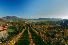 Bor, mámor, Badacsony - járd be hazánk egyik legszebb vidékét!