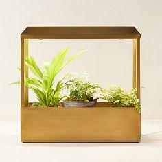 Check out Brass Grow House from Terrain Terrarium Supplies, Flower Farmer, Glass Planter, Kitchen Herbs, Outdoor Garden Furniture, Led Light Strips, Garden Planters, Strip Lighting, Hydroponics