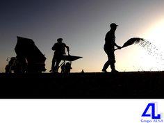 En Grupo ALSA, somos su mejor opción. LA MEJOR CONSTRUCTORA DE VERACRUZ. En nuestra constructora, podemos realizar construcción de terracerías y pavimentos asfálticos; movimiento de tierras; obras complementarias, gasoductos, oleoductos y cabezales. Le invitamos a comunicarse con nosotros al teléfono (229) 922 55 63, para conocer más de nuestros servicios. #ConstructoraVeracruz www.grupoalsa.com.mx