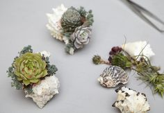 Succulent creations by Flora Grubb Gardens www.powerhousegrowers.com @Powerhouse Growers
