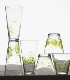 Fern and Frond Glasses design by Roost