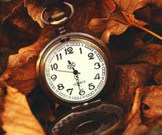 I love how time slows in Autumn...a breath from summers hectic activities! ARH