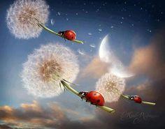 Flying Past the Moon, luck of the ladybug Fantasy Kunst, Fantasy Art, Art Fantaisiste, Dandelion Wish, Moon Art, Moon Moon, Whimsical Art, Surreal Art, Stars And Moon