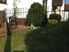 Zaun steht und entspricht voll meinen Erwartungen. Die Restsumme ist überwiesen. Hier 2 Bilder: Vielen Dank Michael V.