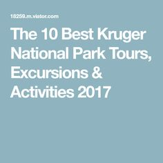 The 10 Best Kruger National Park Tours, Excursions & Activities 2017