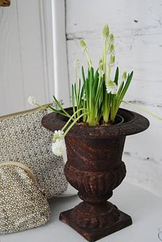 I love cast iron urns!  Several available at American Home & Garden in Ventura, CA.  booth #7