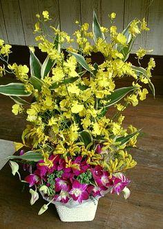花ギフトのプレゼント【BFM】  ラン達の主張  そんなフラワーアレンジメント http://www.basketflowermarkets.com