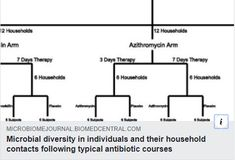 Microbial diversity in individuals and their household contacts following typical antibiotic courses Small Intestine Bacterial Overgrowth, Bacterial Infection, Fast Tract Diet, Diversity, Drugs, Household, Therapy, Day, Counseling