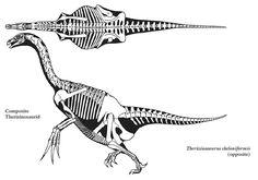 Therizinosaurus - Google 搜尋