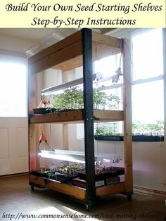 Your Own Simple Seed Starting Shelves Build Your Own Simple Seed Starting Shelves: Build these simple seed starting shelves for gardening indoors.Build Your Own Simple Seed Starting Shelves: Build these simple seed starting shelves for gardening indoors. Hydroponic Gardening, Gardening Tips, Indoor Gardening, Organic Gardening, Indoor Greenhouse, Small Greenhouse, Greenhouse Ideas, Plants Indoor, Aquaponics