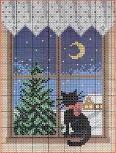 Chat et fenêtre