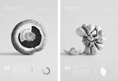 Gemma Warriner | UTS Visual Communication Grad Show 2013