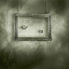 Tamàs Ambrits Modern Photographers, Frame, Aquarium, Home Decor, Photography, Art, Black N White, Picture Frame, Goldfish Bowl