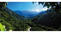Costa Rica- Pura Vida!