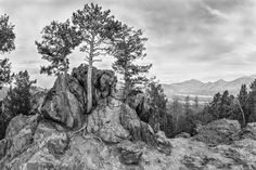 Rocky Mountain NP #MomentstoConserve