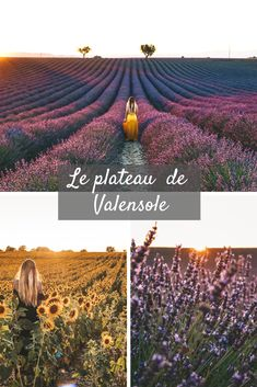 Provence, The Good Place, Vineyard, Places To Go, Road Trip, Relaxation, Vacation, Amazing Places, Destinations