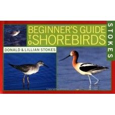 Beginners Guide to Shore Birds. Whether you want to identify the shorebirds that you see along sandy beaches, rocky shores, tidal flats, salt marshes, or interior woodlands,