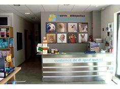 decoracion veterinarias - Buscar con Google