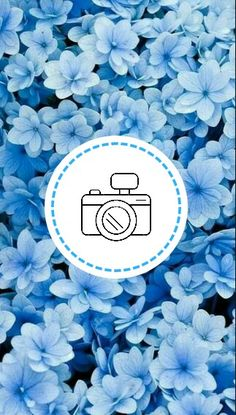 Snapchat Icon, Insta Icon, Instagram Highlight Icons, Prada, Highlights, Doll, Templates, Wallpaper, Blue Flowers