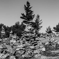 """#exploring #Maine #summer #August #bnw #blackandwhite #wandering #myMaine #landscape #daylight #exploreusa #exploreMaine #exploreAmerica"" Photo taken by @ndoocy on Instagram, pinned via the InstaPin iOS App! http://www.instapinapp.com (09/02/2015)"
