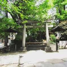 Susanoo Shrine in Tokyo. There is a small shrine inside where Mt. Fuji is worshiped. #tokyo #japantravel #shrine