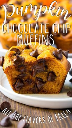 These pumpkin chocolate chip muffins are light and tender treats full of warm spices and plenty of chocolate chips.